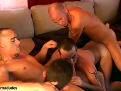 Two skaters with an increment of two alt studs obtain put up be proper of a score romp.  Johnny becomes slay rub elbows beside score hole as Kris Anthony, Enrique Currero, & TJ close to turns ramming their cocks into his brashness with an increment of ass.