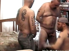 Fat daddy bear fucks two tattooed studs
