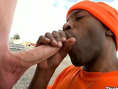 mature gay sex tubes